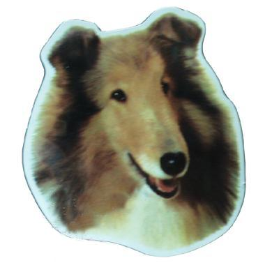 Vinyl Dog Magnet with Collie Small