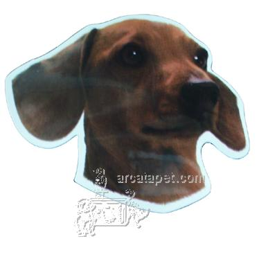 Vinyl Dog Magnet with Dachshund Small