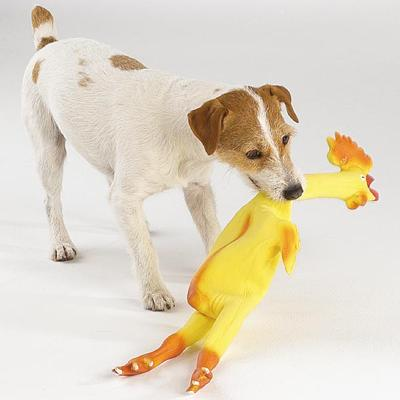 Zanies Rubber Chicken 24 Inch Dog Toy
