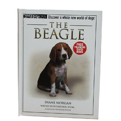 The Beagle (Terra Nova)