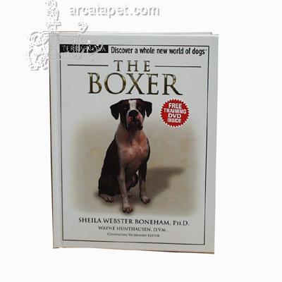 The Boxer (Terra Nova)