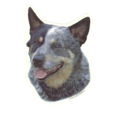 Double Sided Dog Decal Australian Cattle Dog