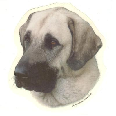 Double Sided Dog Decal Anatolian Shepherd