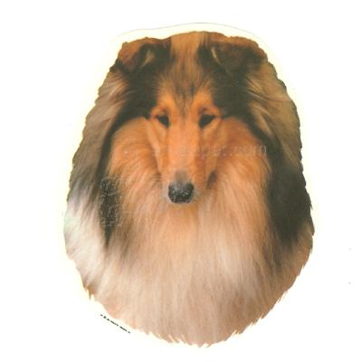 Double Sided Dog Decal Collie