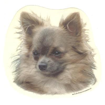 Double Sided Dog Decal Chihuahua Long Haired