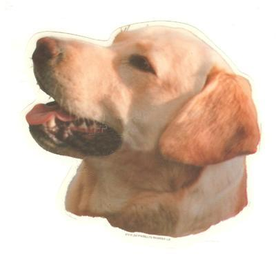 Double Sided Dog Decal Labrador Retriever Yellow