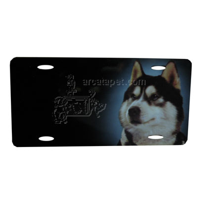 Aluminum Dog Breed License Plate with Siberian Husky