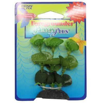 Annubias Foregrounder Silk Aquarium Plant