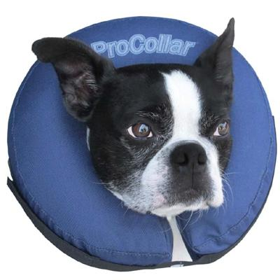 ProCollar Inflatable Elizabethan Collar Medium