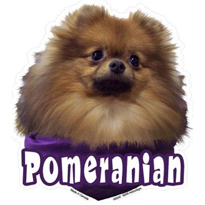 6-inch Vinyl Dog Decal Pomeranian Picture
