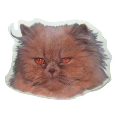 Double Sided Cat Decal Persian Brown