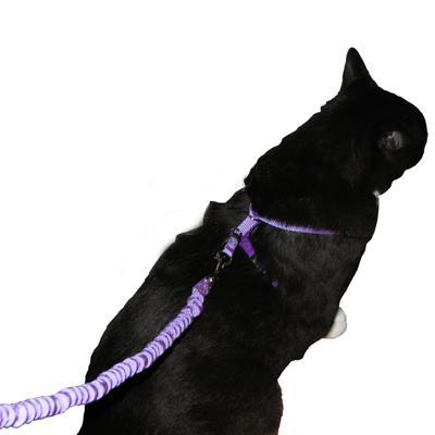 Come With Me Kitty Harness & Bungee Leash Medium Lilac
