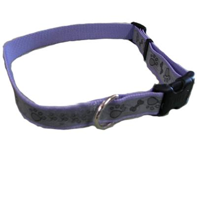 Lazer Brite PawBone Dog Collar Large Reflective