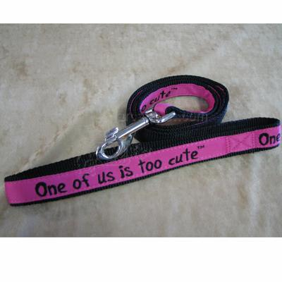 Embroidered Dog Leash 4-ft x1-in One of us is too cute