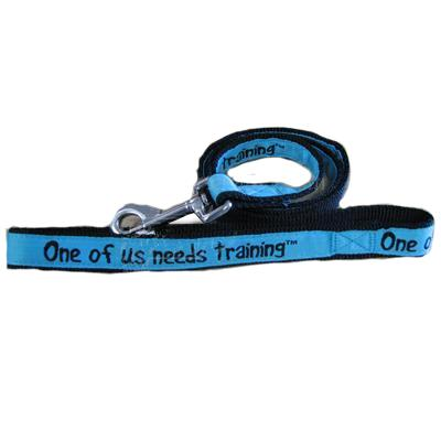 Embroidered Dog Leash 4-ft x1-in One of us needs training