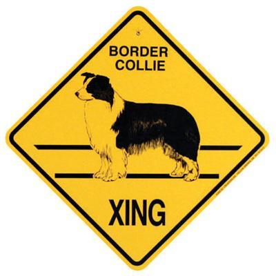 Xing Sign Border Collie Plastic 10.5 x 10.5 inches