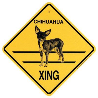 Xing Sign Chihuahua Short Coat Plastic 10.5 x 10.5 inches