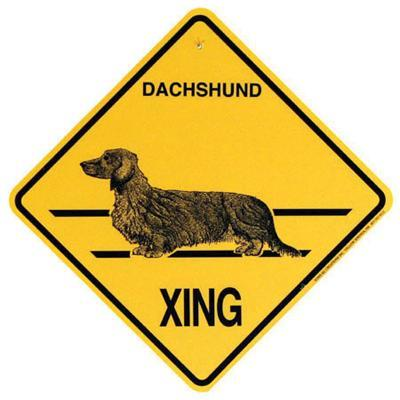 Xing Sign Dachshund Long Hair Plastic 10.5 x 10.5 inches