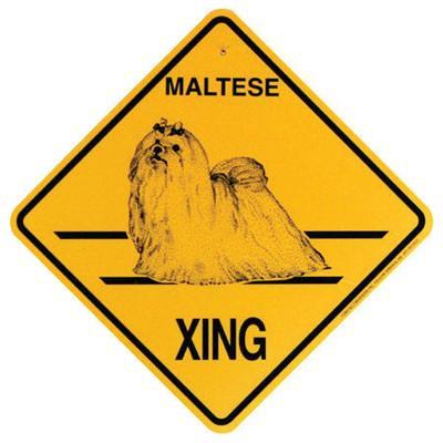 Xing Sign Maltese Plastic 10.5 x 10.5 inches