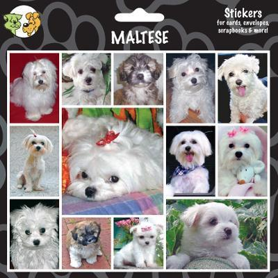 Arf Art Dog Sticker Pack Maltese