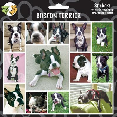 Arf Art Dog Sticker Pack Boston Terrier