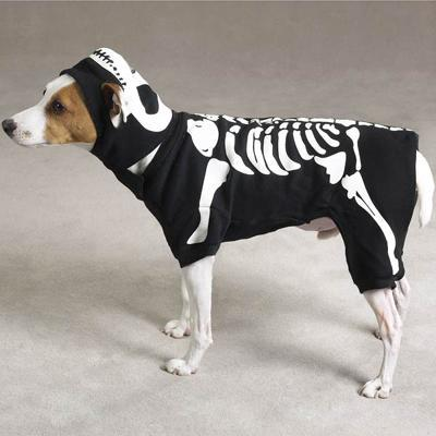 Dog Costume Glow Bones Medium