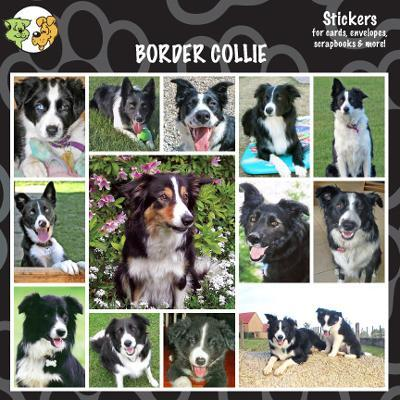 Arf Art Dog Sticker Pack Border Collie