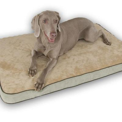 Memory Foam Dog Bed Sage Large