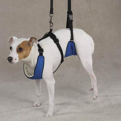 Lift & Lead Dog Harness Small