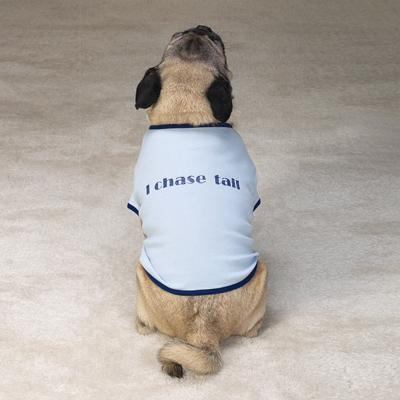 Casual Canine Small Humor Dog Tee-Shirt I Chase Tail