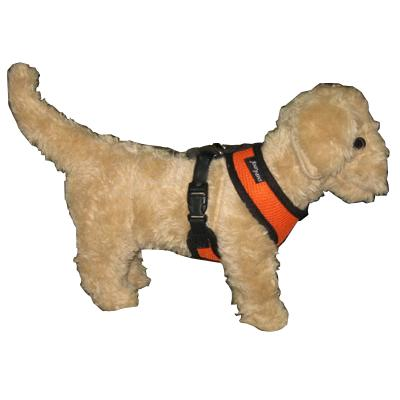 Comfort Control Dog Harness Orange Medium