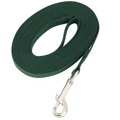 Dog Training Lead Green 50 ft