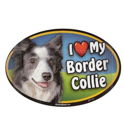 Dog Breed Image Magnet Oval Border Collie
