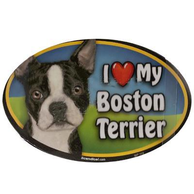 Dog Breed Image Magnet Oval Boston Terrier