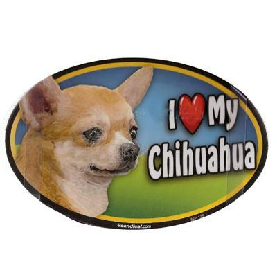Dog Breed Image Magnet Oval Chihuahua Apple headed