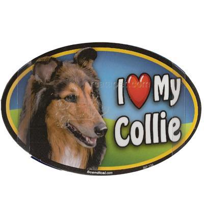 Dog Breed Image Magnet Oval Collie