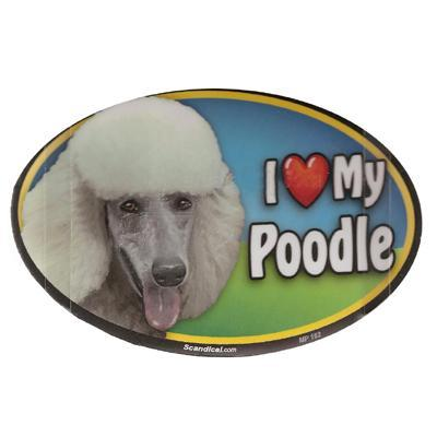 Dog Breed Image Magnet Oval Poodle White