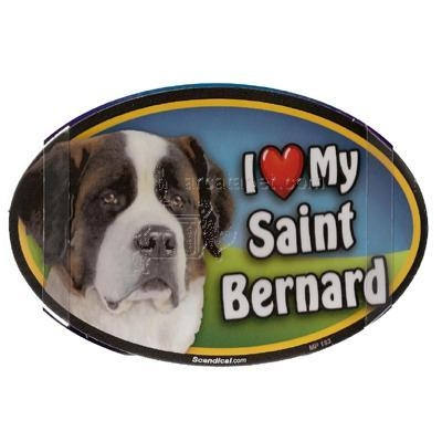 Dog Breed Image Magnet Oval Saint Bernard