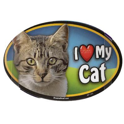 Cat Image Magnet Oval Tabby