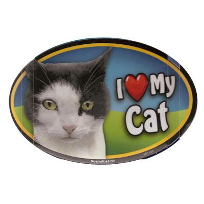 Cat Image Magnet Oval Black and White Cat