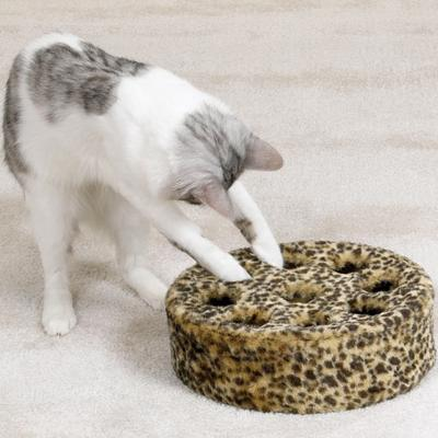 Zanies Leopards Den Kitty Teasers Cat Toy