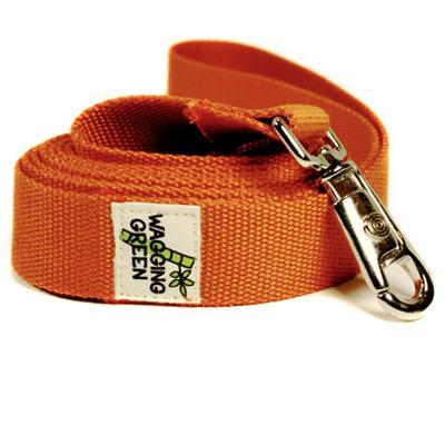 Bamboo Dog Leash 1-inch x 5-feet Fall Orange