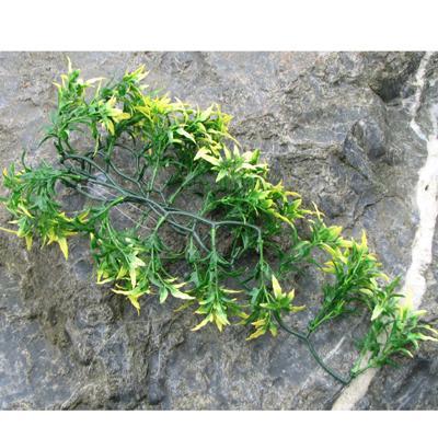 Exo Terra Croton Terrarium Plant Medium