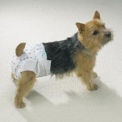 Doggy Diapers Med 10 Pack