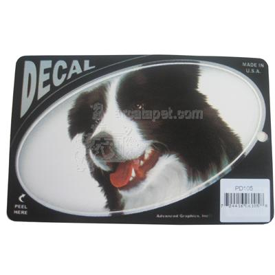 Oval Vinyl Dog Decal Border Collie Picture