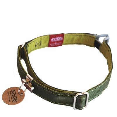 Tazlab Safe-T-Stretch Large Green Dog Safety Collar