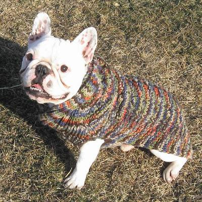Handmade Dog Sweater Wool Multi-Colored Shawl XXSmall
