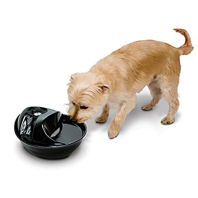 Rain Drop Ceramic Pet Water Fountain