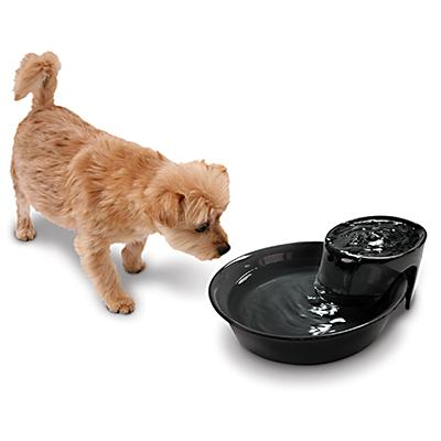 Big MAX Ceramic Pet Drinking Fountain