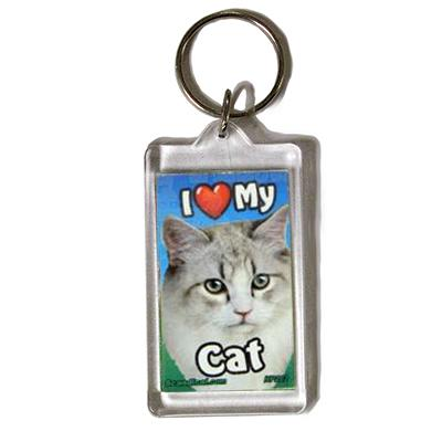 Plastic Keyring Cat Maine Coon Light